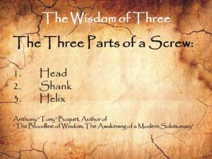 the-wisdom-of-three-the-screw