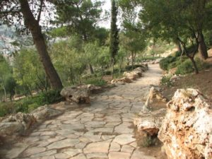 stone-path-of-jerusalem
